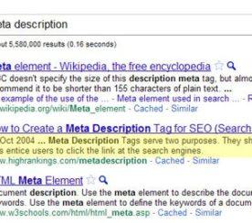 Meta Description and Content Management Systems – SEO and Social Media Factors