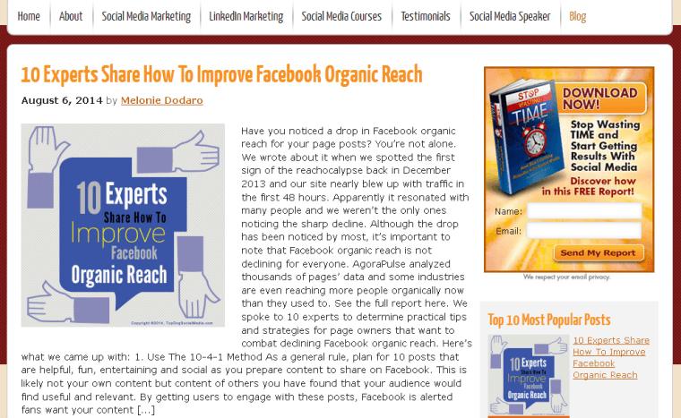 2014-08-09 09_14_37-Social Media Marketing Blog; Melonie Dodaro & Top Dog Social Media
