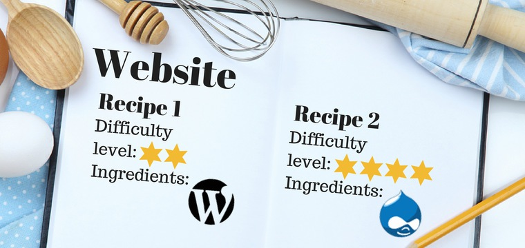 WordPress vs. Drupal: How to Choose a CMS for Your Business