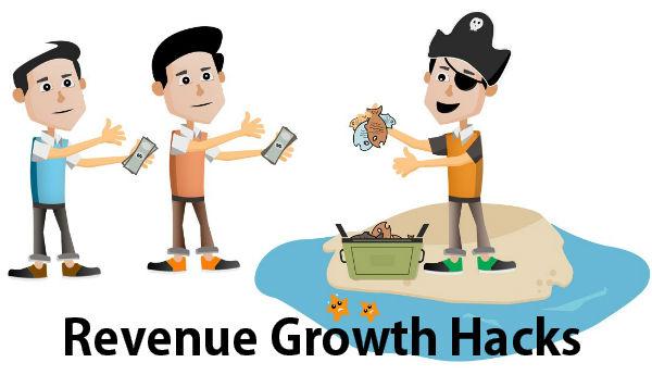 Revenue Growth Hacks