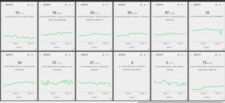 Cyfe SERP tracking widgets