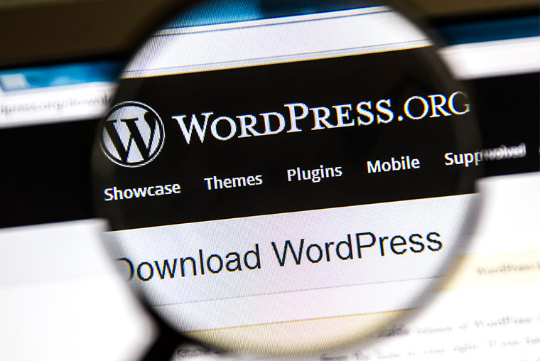 Look into Plug-ins in WordPress That Have Gone Rogue