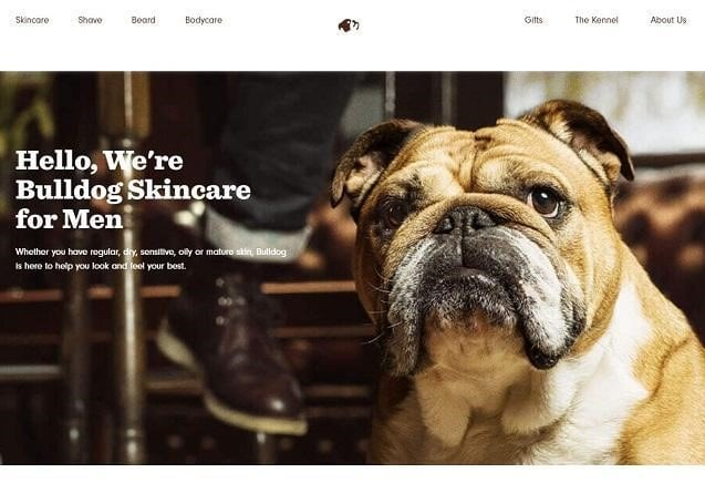 25 Awesome Examples of About Us Pages