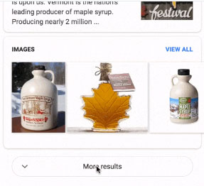 """Image showing the """"More results"""" button"""