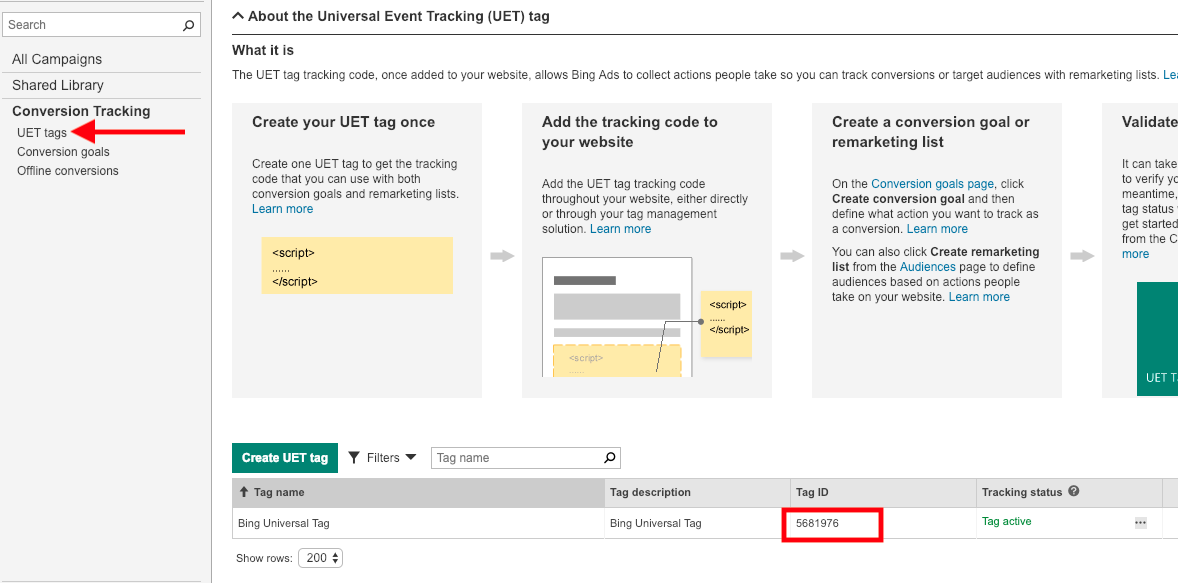 Accessing Bing UET Tag