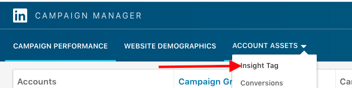 Access LinkedIn Insight Tag