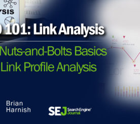 The Basics of Link Profile Analysis