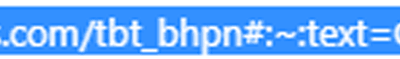 Screenshot close up of URL parameter